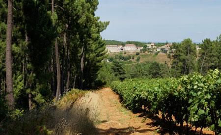 It is 10 minutes walk to the vineyards and woods.